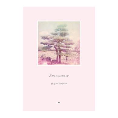 Jacques Borgetto - Évanescence 01