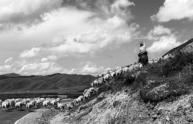 Jacques Borgetto - Si Près du Ciel, le Tibet 02