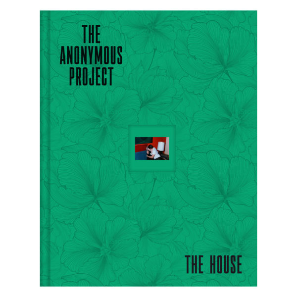 Lee Shulman - The Anonymous Project 01