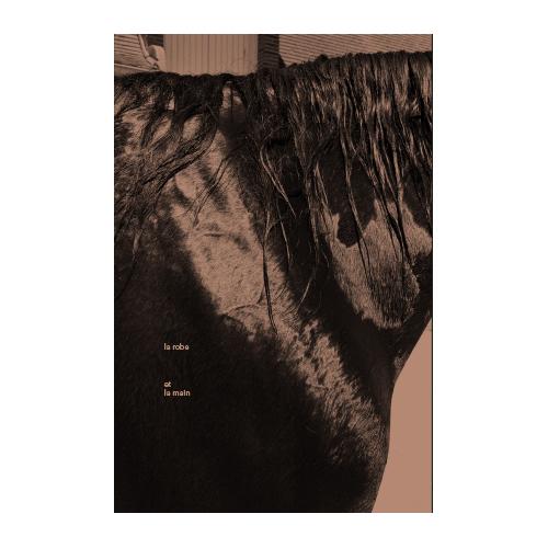 Julien Magre - La Robe et la Main 01