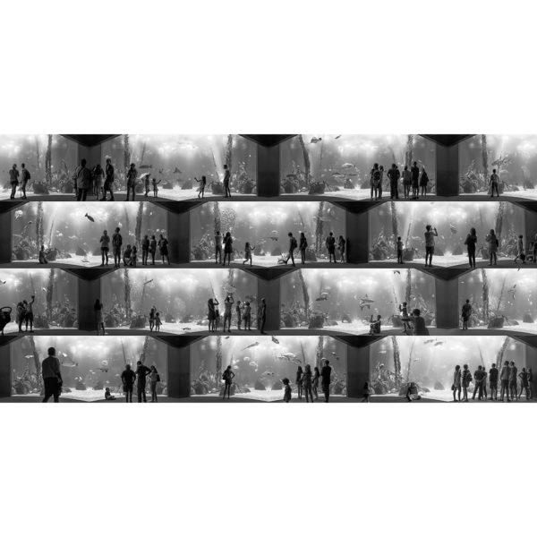 Lucas Lenci - Movimiento Estatico 02